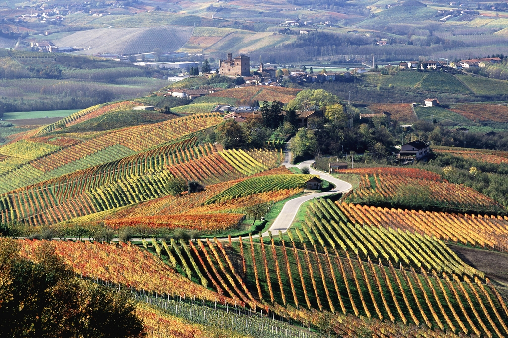 Piemonte - FOTO DI © ROBERTO SACCO/SINTESI