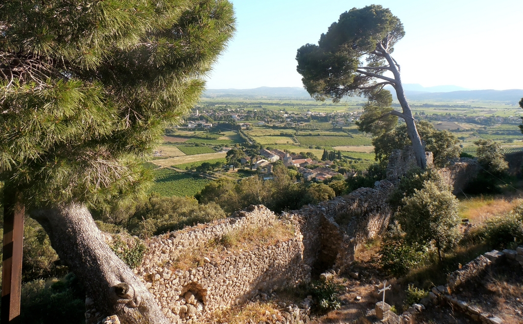 Languedoc larzac