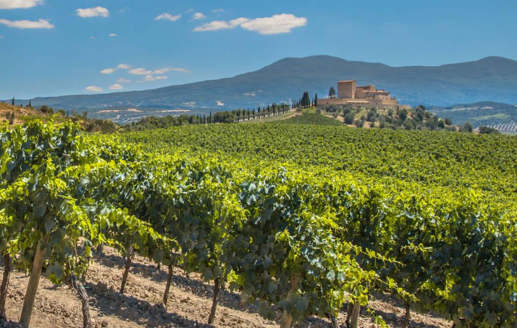 Herminia Tinto Excelsus Rioja