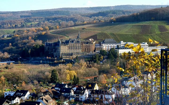 Wijnreis Duitsland 'de Vulkaniërs'