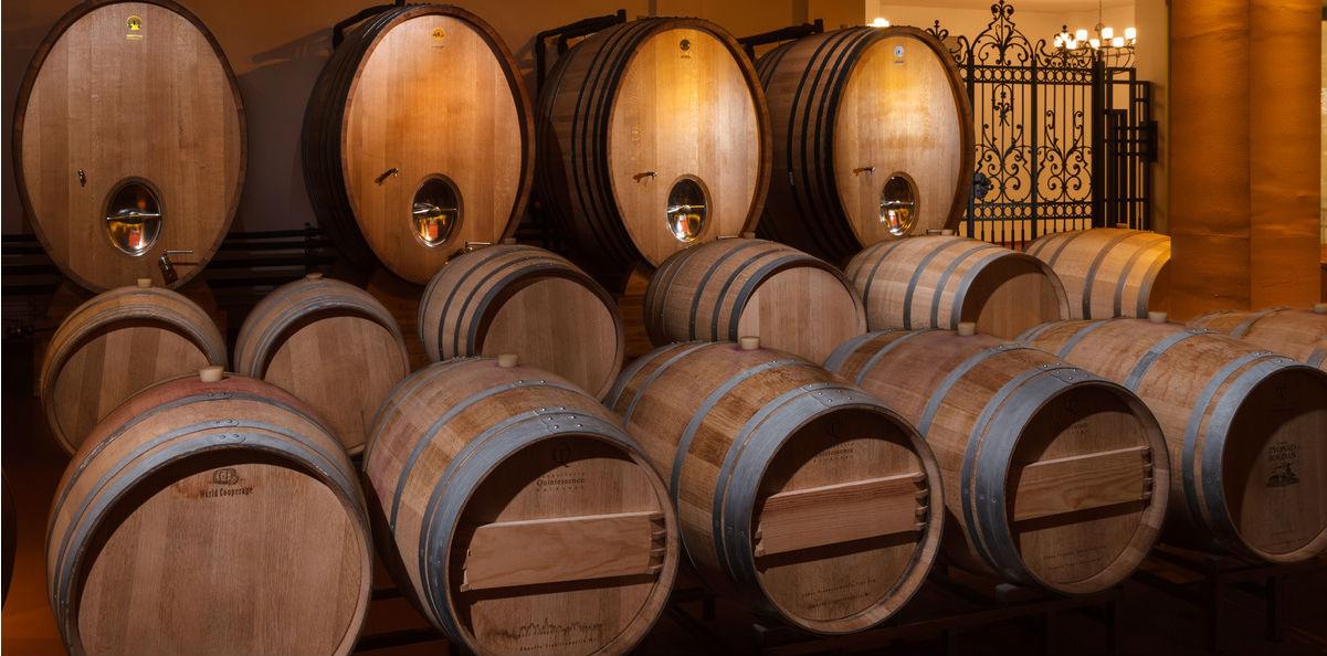 Palić wine route