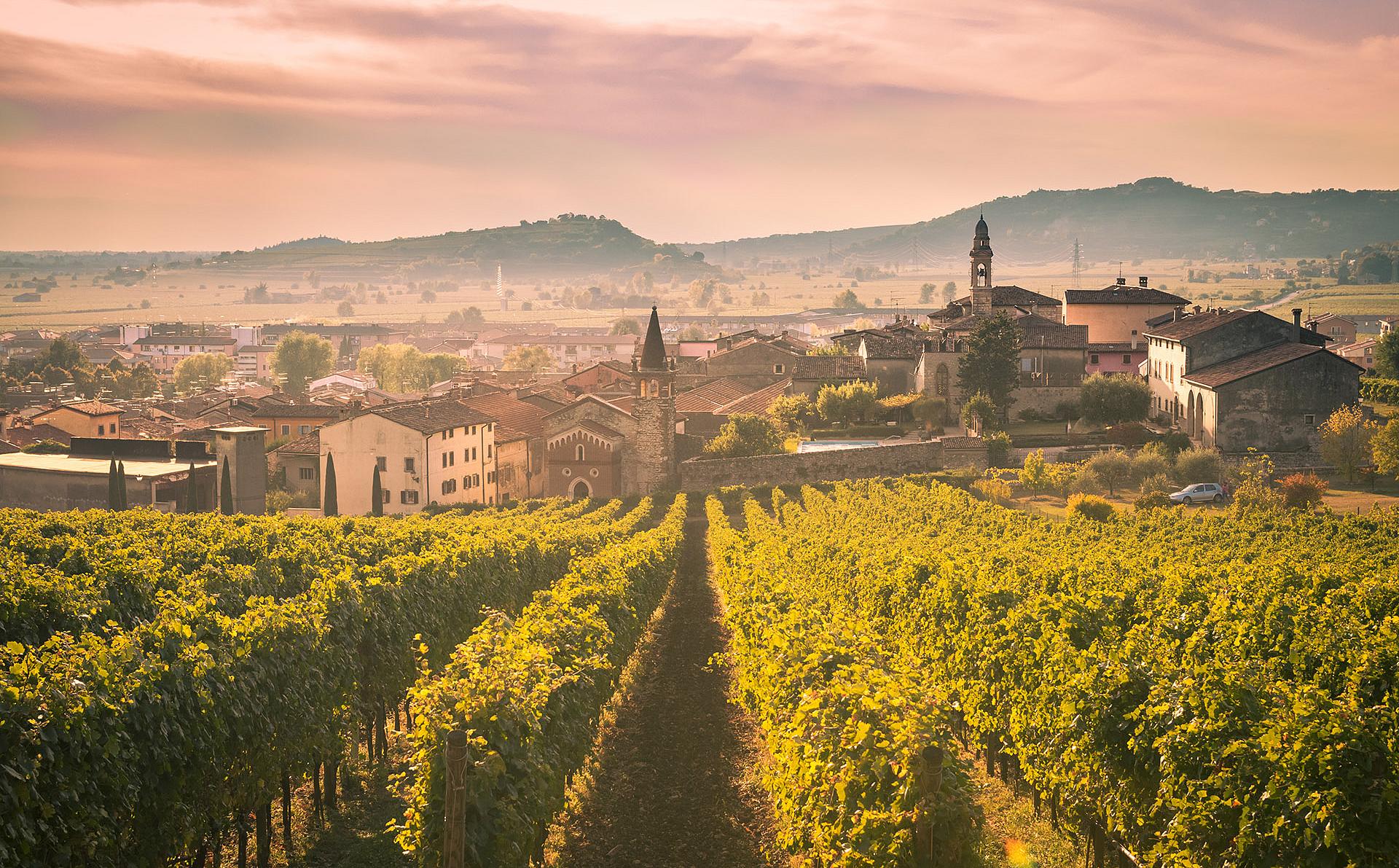 Tricolore Carganega Chardonnay Cantina di Monteforte