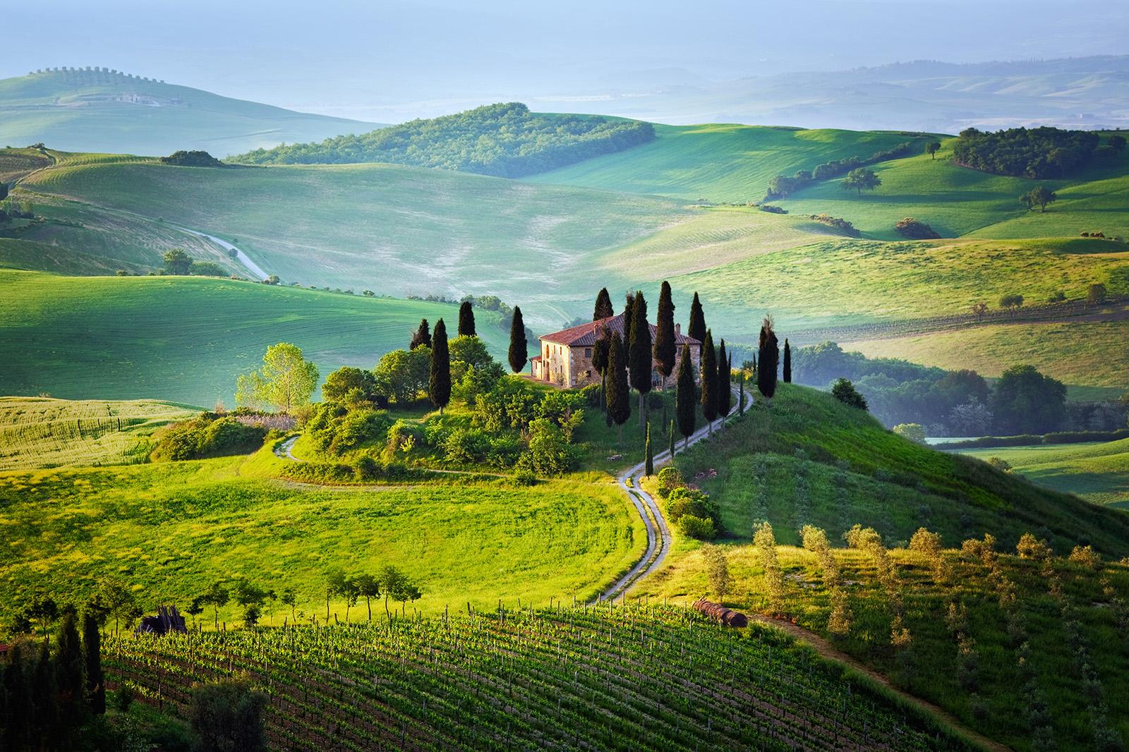 Tricolore Veneto corvina & merlot