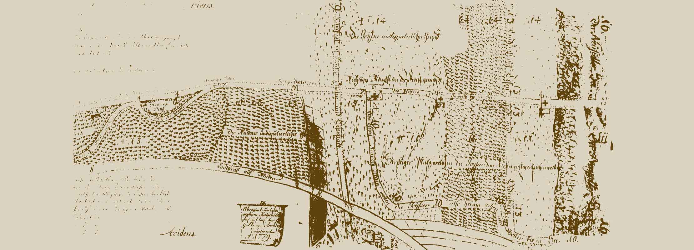 Umathum Grauburgunder Burgenland