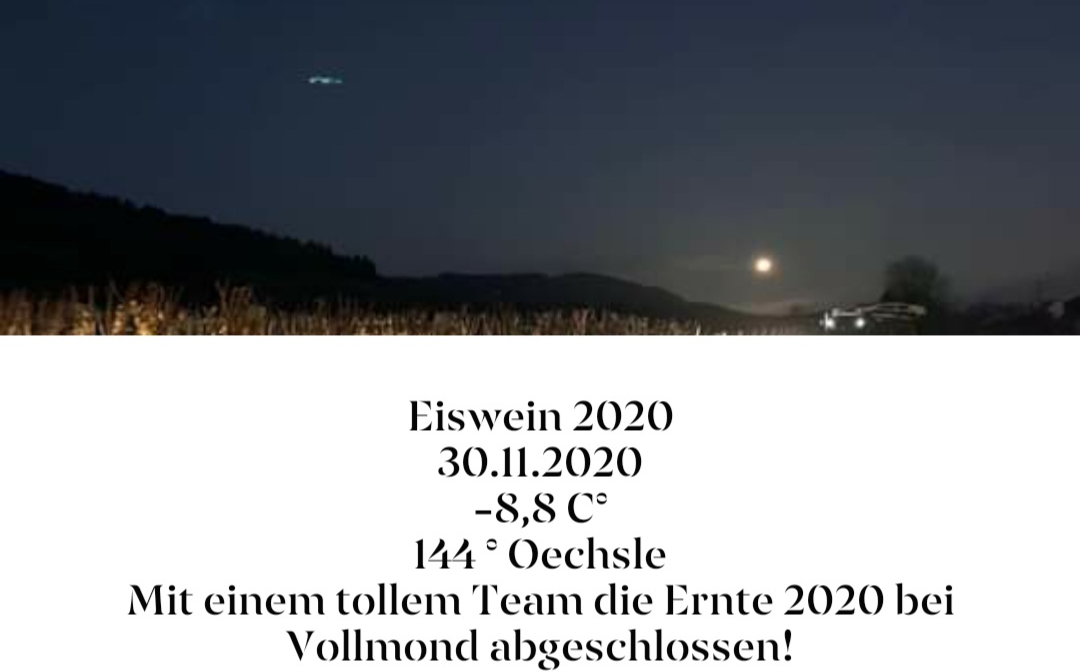 Blees Ferber Eiswein